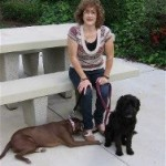 My Writing Life by Margot Kinberg, Guest Blogger